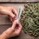 Comment éviter les têtes moisies lors du sèchage et du curing de votre weed ?