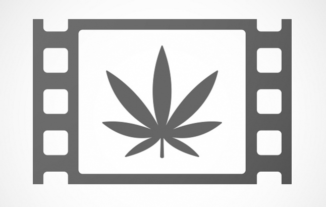 Le Top 10 des Documentaires sur le Cannabis