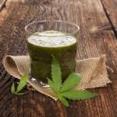 Les Bienfaits Du Jus Brut De Cannabis