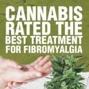 Le cannabis a été évalué meilleur traitement contre la fibro