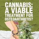 Cannabis : un traitement viable pour l'arthrose ?