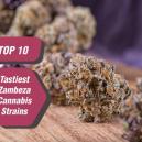 Top 10 des variétés de cannabis de Zambeza les plus savoureu