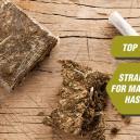 Un top 5 des variétés pour faire du hasch