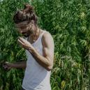 Comment commencer à cultiver de l'herbe: guide du débutant